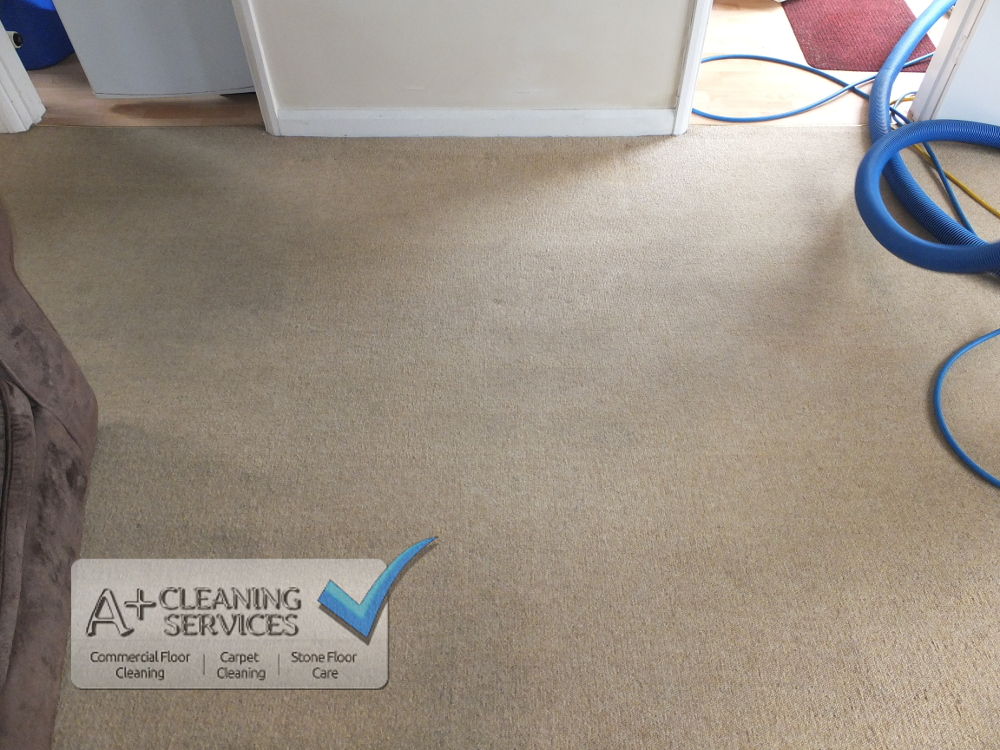 Carpet Cleaning Cirencester - Tenancy (After) by A+ Cleaning Services