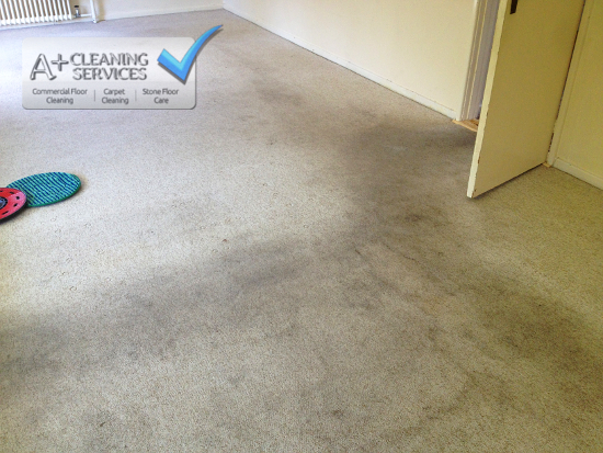 Carpet Cleaner Gloucester - DIY Disaster (Before) by A+ Cleaning Services